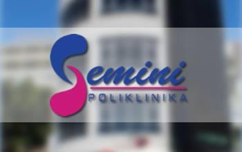 gemini-about